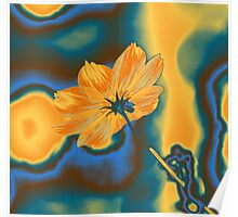 Pop Art Yellow Cosmos Flower Posters Poster