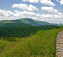 Skyline Drive the BlueRidge Mountains by GalleryThree