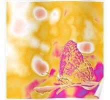 Pop Art Butterfly on leaf  Poster