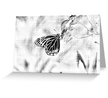 Vintage Beautiful Butterfly on flower - Black and White Greeting Card
