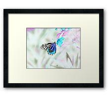 Beautiful Butterfly on flower - Negative Photo Framed Print