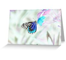 Beautiful Butterfly on flower - Negative Photo Greeting Card