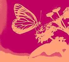 Pop Art Butterfly on flower Poster by Nhan Ngo