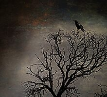 Black Bird Fly by Randy Turnbow