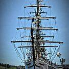 Baltimore Sailabration by Robin Black