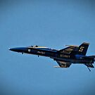 Blue Angels in Baltimore by Robin Black
