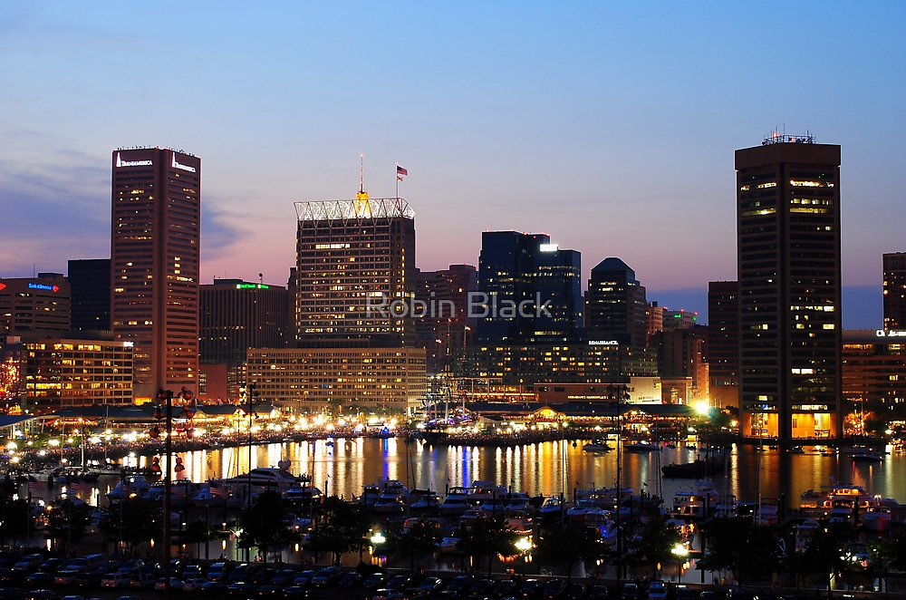 Baltimore Skyline by Robin Lee