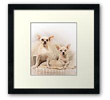 Chihuahua Gothic Framed Print