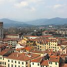 Lucca Aerial panoramic view with Piazza dell' Anfiteatro by kirilart