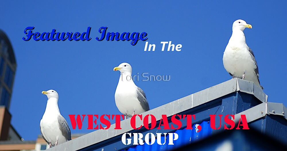 West Coast, USA. Featured Banner by Tori Snow