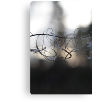 Curl Wire  Canvas Print