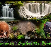 Tasmania - Explore the Beauty by Tim Clark