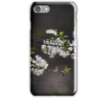 Little White Blossoms iPhone Case/Skin