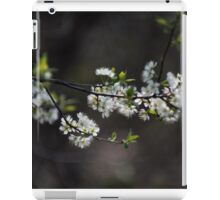 Little White Blossoms iPad Case/Skin