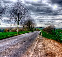 Driving into the storm by Vicki Field