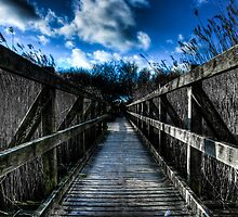 Studland Bridge by William Rottenburg