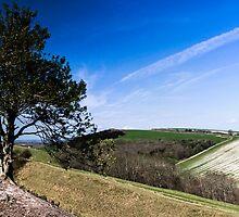 Hod Hill by William Rottenburg