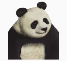 Awesome panda is awesome by Harry Wood