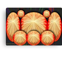 Chrysanthemum Spheres Canvas Print