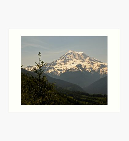 Mt Rainier from Evan's Creek Art Print