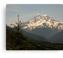 Mt Rainier from Evan's Creek Canvas Print