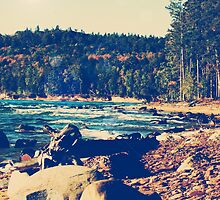 Rocky Shores of Lake Superior by perkinsdesigns