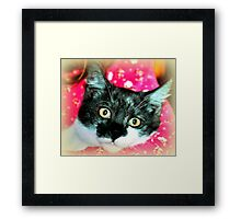 Holly Wood Framed Print