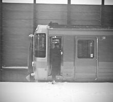The train was stopped by the blizzard by sxhuang818