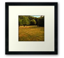 Waking Up in Wisconsin Framed Print