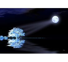 White tree under full moon Photographic Print
