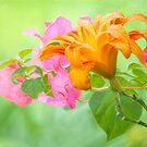 Summer Garden by Bonnie T.  Barry