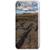 Summer on Ben Lomond iPhone Case/Skin