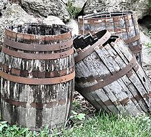 So Many Wine Barrels, So Little Time by Monnie Ryan