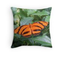 Orange Tiger Butterfly Throw Pillow