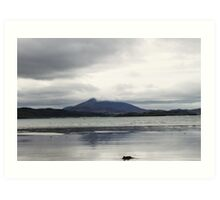 Donegal Beach Art Print