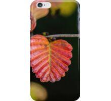 Fagus iPhone Case/Skin