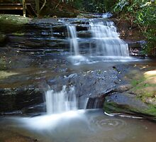 Martin's Creek Cascades by Wayne  Nixon