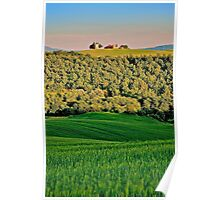 Tuscan Church, Val d'Orcia, Italy Poster