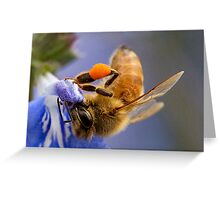 Working Bee Greeting Card