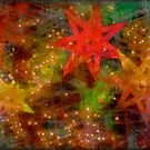 Christmas Stars by Malcolm Clark