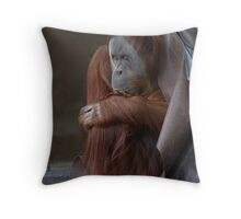 Feeling Chilly Throw Pillow