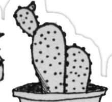 Cacti Trio Sticker