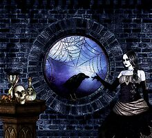 The Raven's Mistress by shutterbug2010