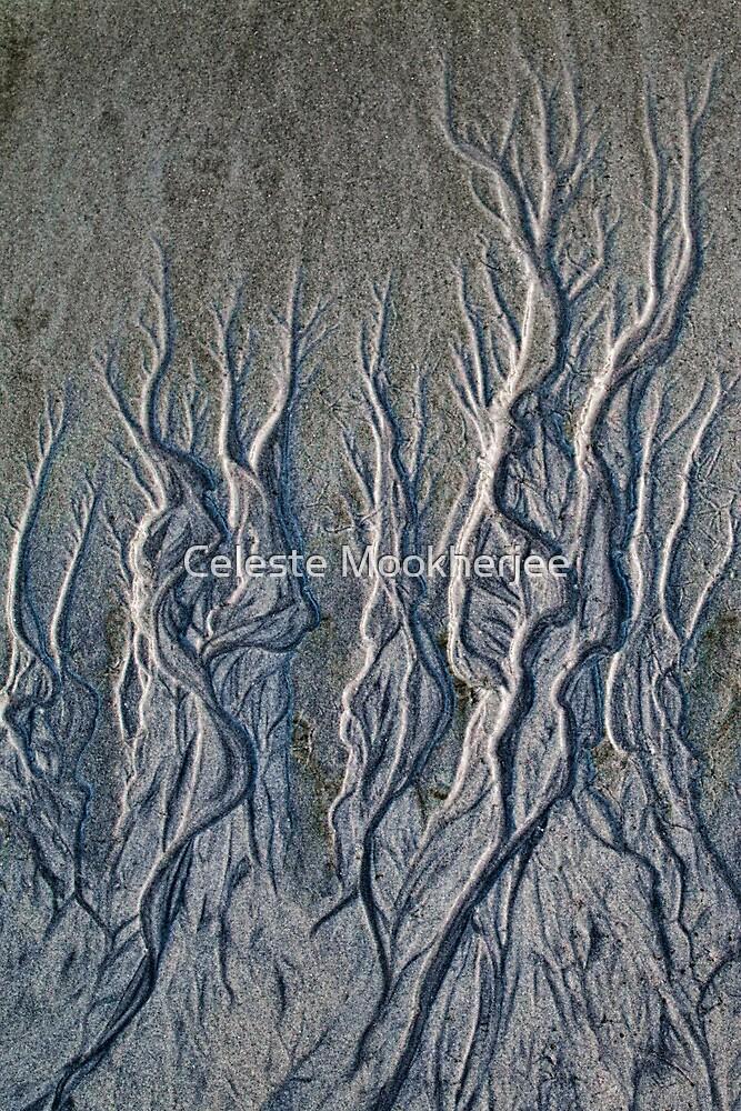 Curving tendrils by Celeste Mookherjee