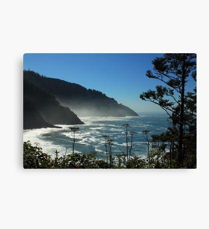 Misty Coast at Heceta Head Canvas Print