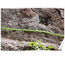 Water pipe against a rock Poster