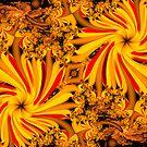 Orange Garden by innacas