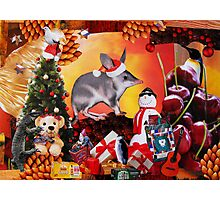 Aussie Christmas Collage Photographic Print