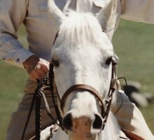 Ronald Reagan On Horseback Sticker