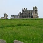 Whitby Abbey by Tania  Donald